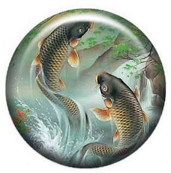 Талисман на удачу для рыб